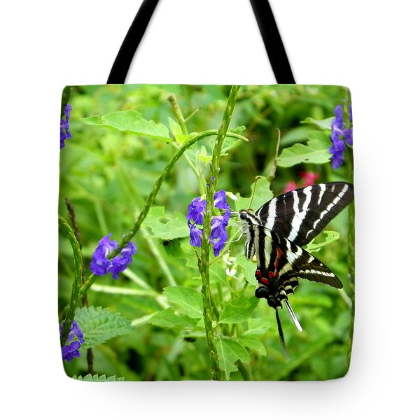 Zebra Swallowtail On Blue Porterweed Tote Bag by Judy Wanamaker