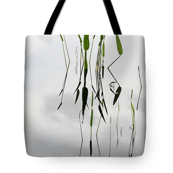 Zen Tote Bag by Sabrina L Ryan