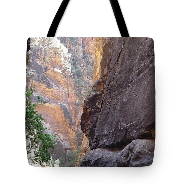 Tote Bag featuring the photograph Zion Awe by Elizabeth Sullivan