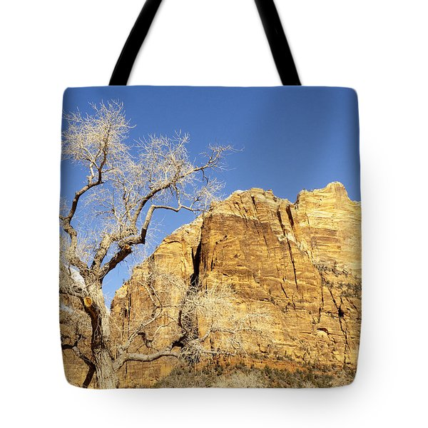 Tote Bag featuring the photograph Zion Winter Sky by Bob and Nancy Kendrick