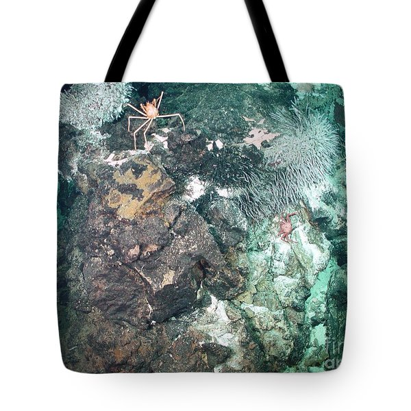Zooarium Chimney Tote Bag