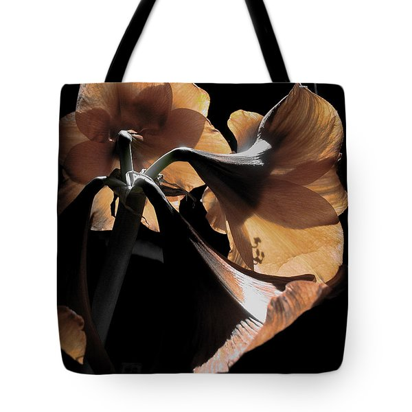 A New Light Tote Bag