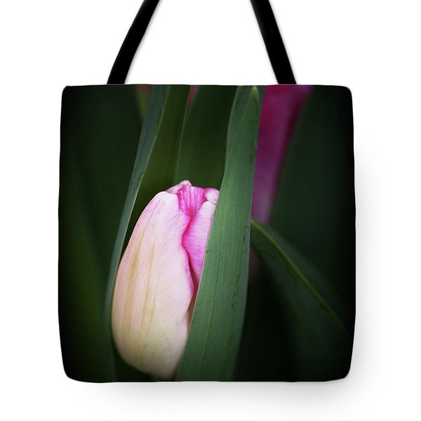 Tote Bag featuring the photograph  A Pink Tulip  by Catherine Lau