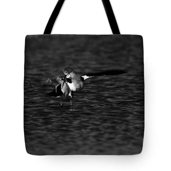 American Avocet Dance  Tote Bag