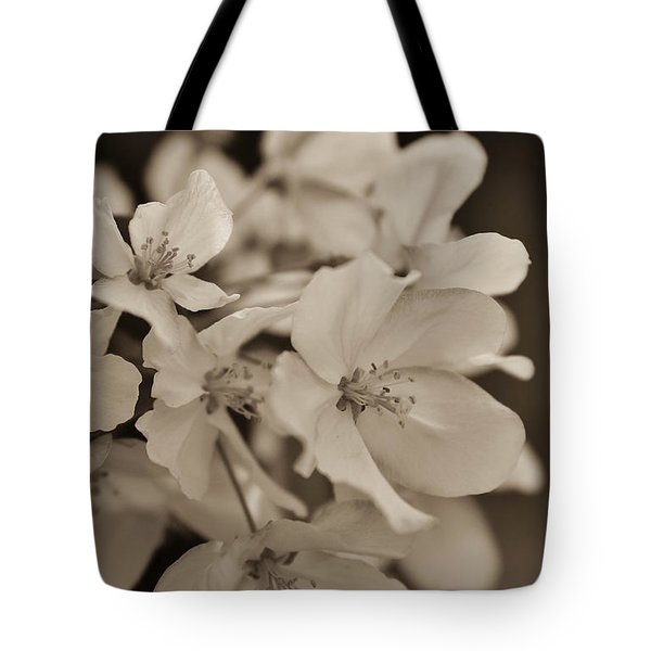 Apple Blosson 31 Tote Bag