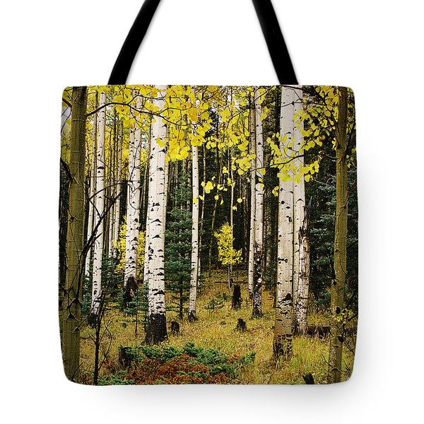 Aspen Grove In Upper Red River Valley Tote Bag