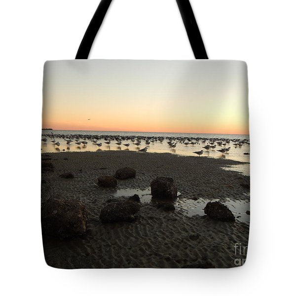 Beach Rocks Barnacles And Birds Tote Bag by Expressionistart studio Priscilla Batzell