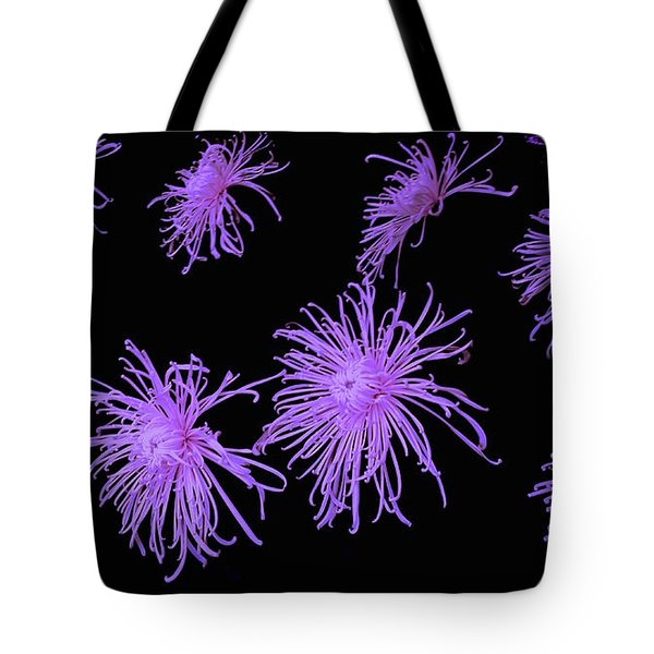 Chrysanthemums In Purple Tote Bag
