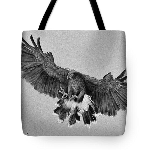 Da181 Harris's Hawk By Daniel Adams Tote Bag