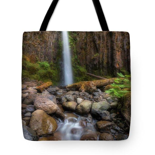 Dry Creek Falls II Tote Bag by David Gn