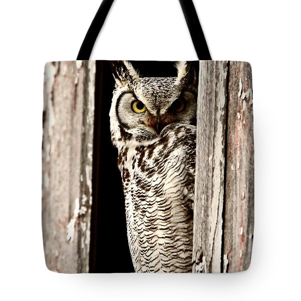 Great Horned Owl Perched In Barn Window Tote Bag by Mark Duffy