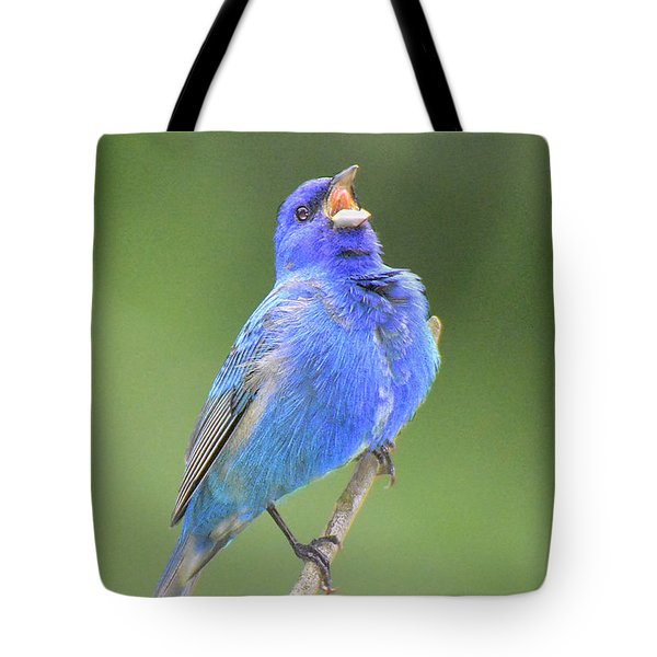 Hear The Indigo Bunting Sing Tote Bag