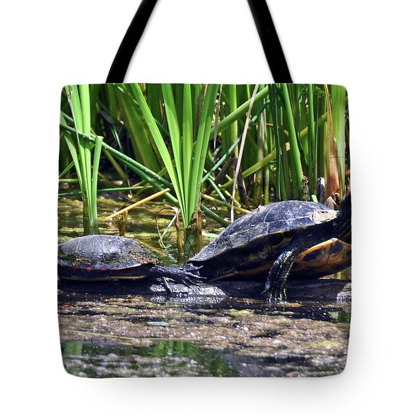 Tote Bag featuring the photograph Turtles Sunning by Elaine Manley
