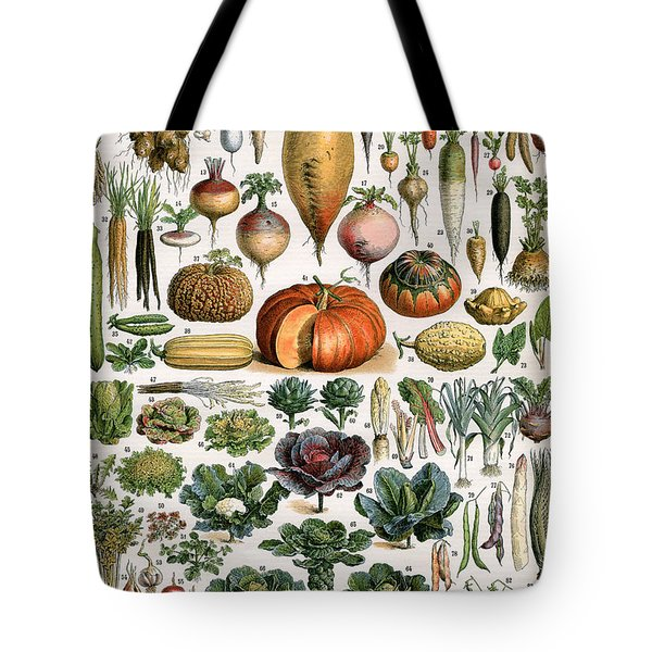 Illustration Of Vegetable Varieties Tote Bag