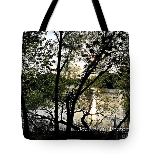 In The Shadows  - No. 430 Tote Bag