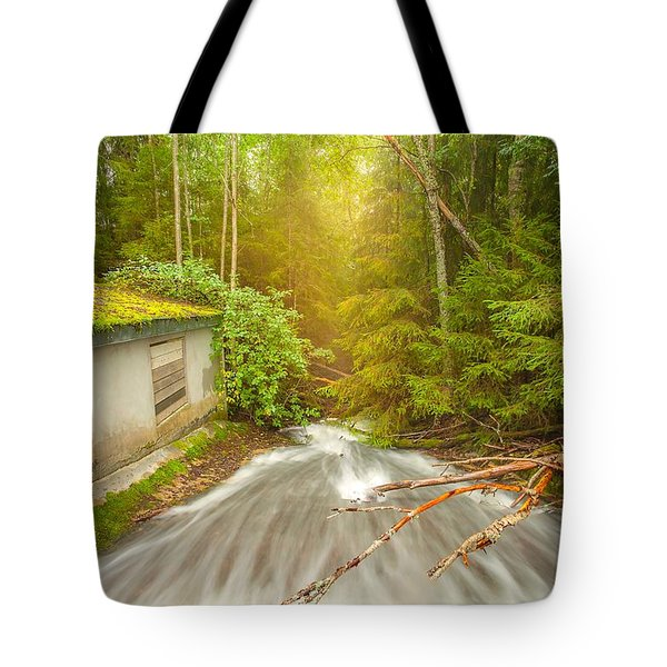 Tote Bag featuring the photograph  In The Woods by Rose-Maries Pictures