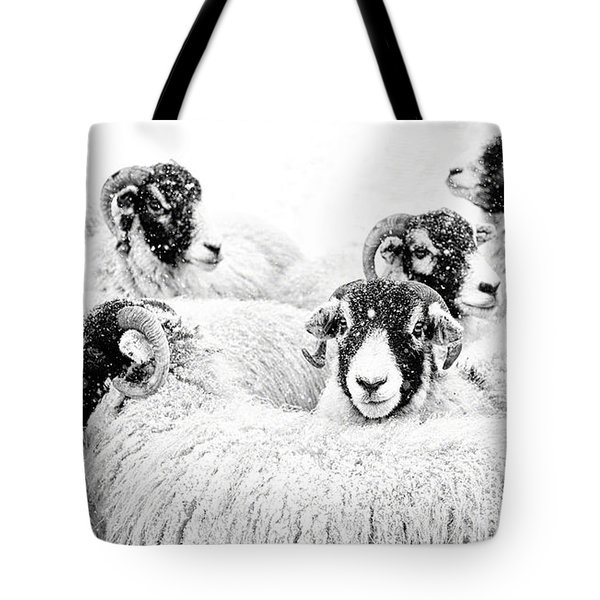 In Winters Grip Tote Bag