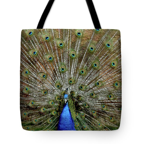 Tote Bag featuring the photograph  Iridescent Blue-green Plumage by LeeAnn McLaneGoetz McLaneGoetzStudioLLCcom