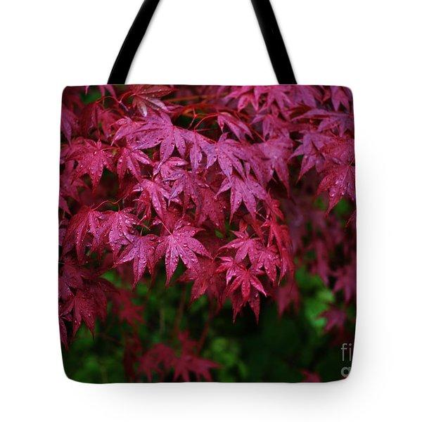 Japanese Maple Rain Tote Bag by Craig Wood
