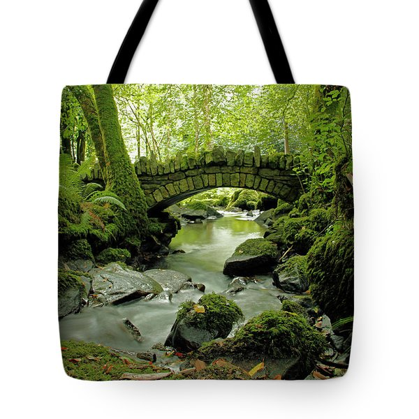 Kilfane Glen  Tote Bag by Martina Fagan