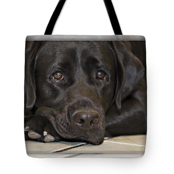Labrador Retriever A1a Tote Bag