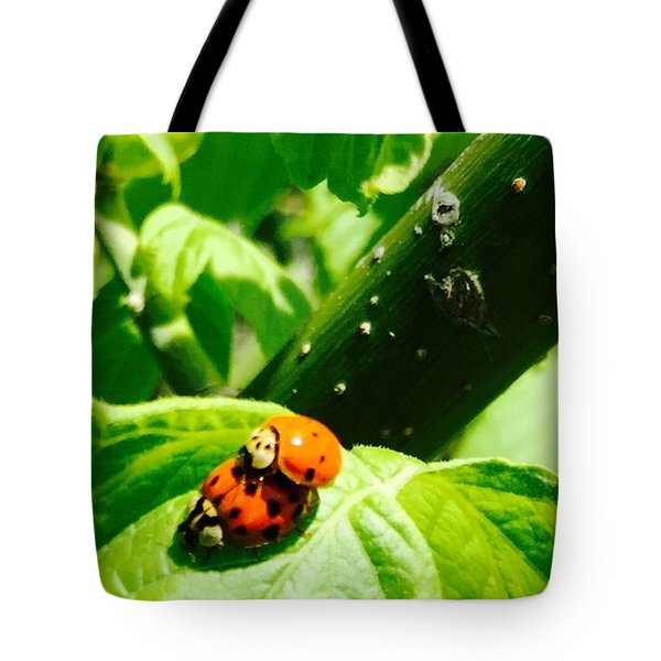 Ladybugs In Love - No. 2016 Tote Bag