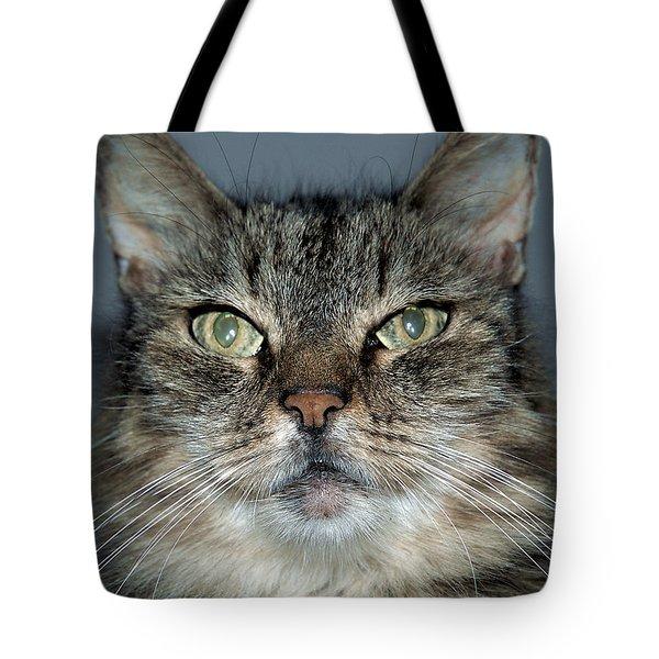 Mugshot Tote Bag