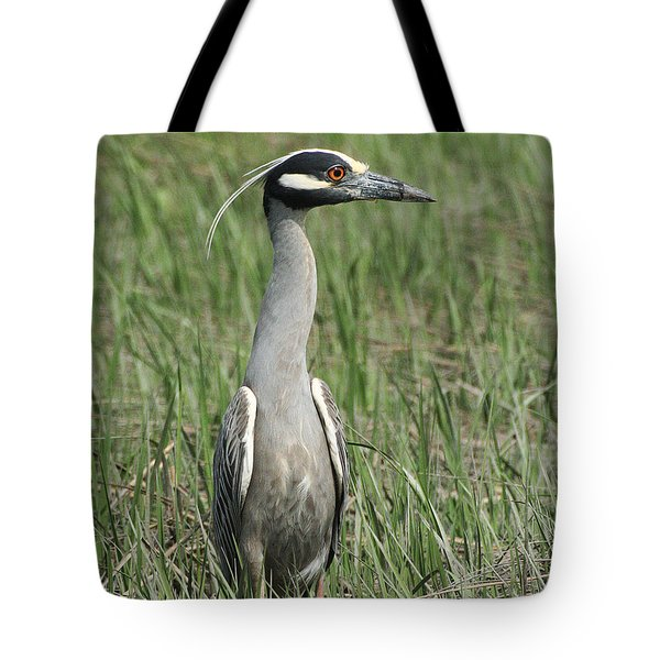 Tote Bag featuring the photograph Night Heron In Profile by William Selander