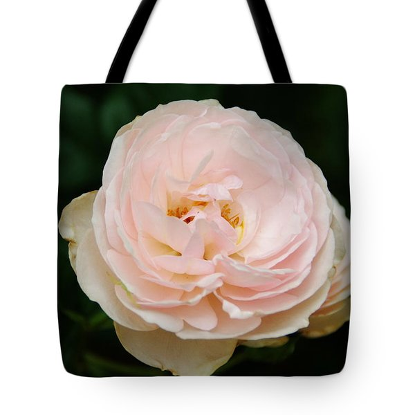 Peach Of A Rose Tote Bag
