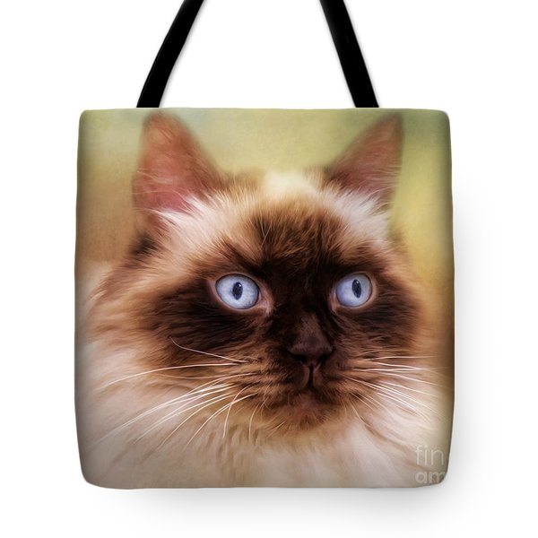 Ragdoll Cat Tote Bag