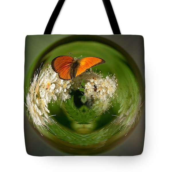 Tote Bag featuring the photograph  Scarce Copper 3 by Jouko Lehto