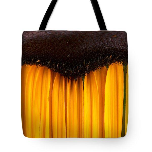 The Curtains Tote Bag by Jouko Lehto