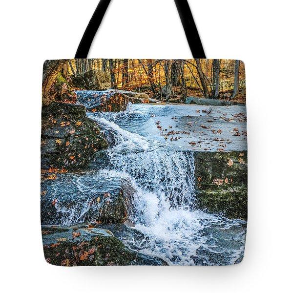 #0043 - Dummerston, Vermont Tote Bag