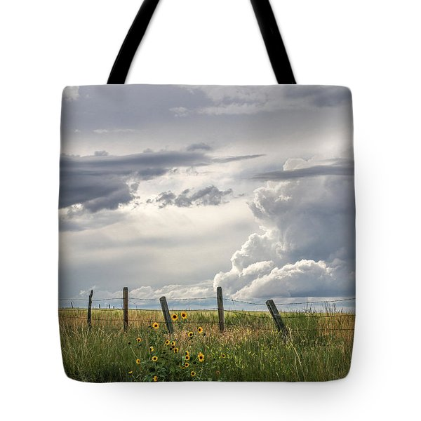 #0149 - Axtel Anceney, Southwest Montana Tote Bag