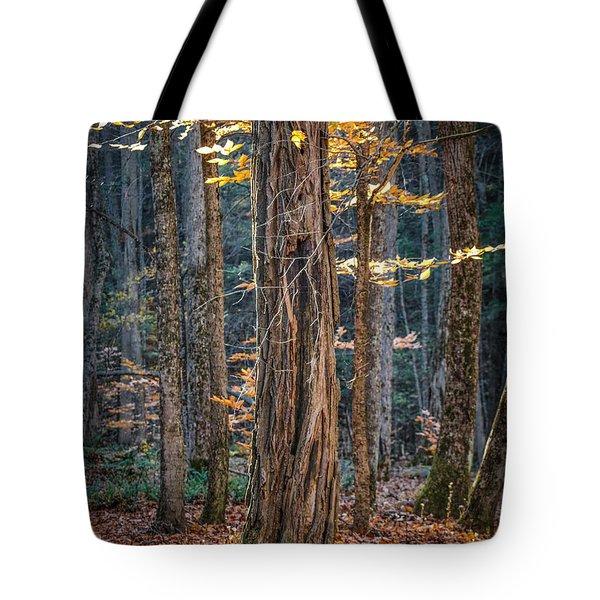 #0187 - Dummerston, Vermont Tote Bag