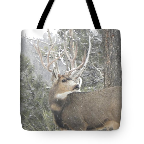 Buck Front Yard Divide Co Tote Bag