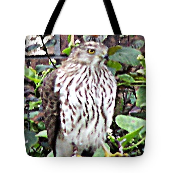 03192015 Sparrow Hawk Tote Bag