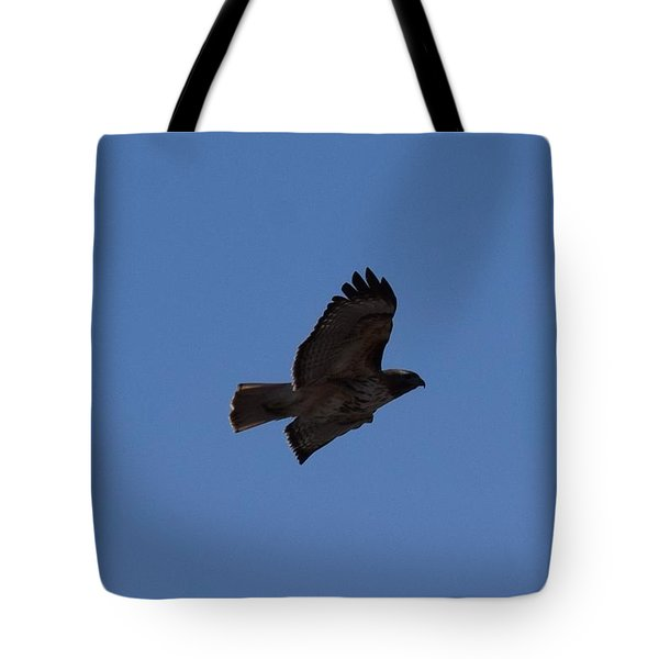 Tote Bag featuring the photograph Red Tail Hawk Male Tower Rd Denver Co 0898 by Margarethe Binkley