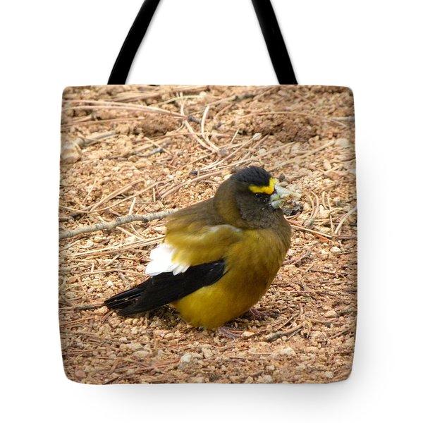 Evening Grossbeak Divide Co Tote Bag