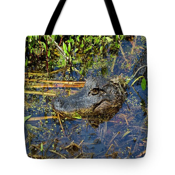 04042015 Jean Laffitte Alligator Tote Bag