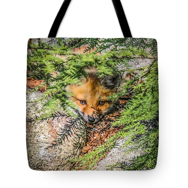 #0527 - Fox Kit Tote Bag