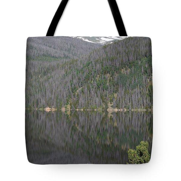 Chambers Lake Reflection Hwy 14 Co Tote Bag