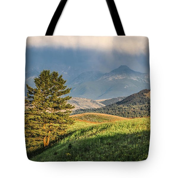 #0613 - Absaroka Range, Paradise Valley, Southwest Montana Tote Bag