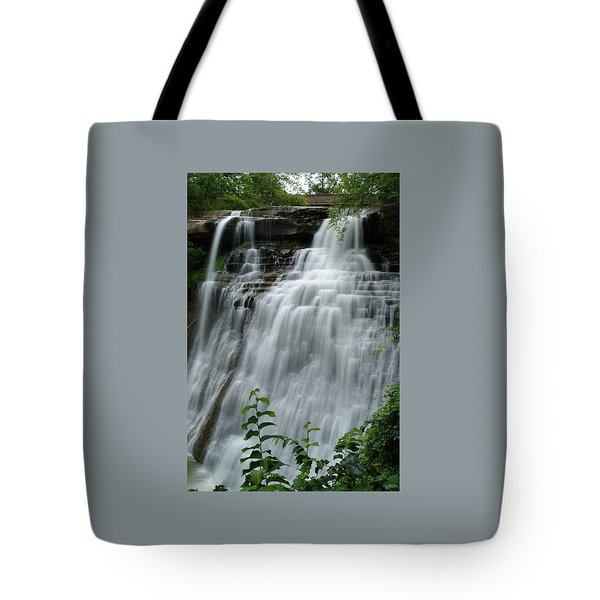 071809-314 Tote Bag by Mike Davis