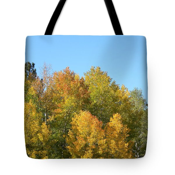 Tote Bag featuring the photograph Fall In Divide Co by Margarethe Binkley