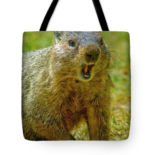 A Hungry Fellow  Tote Bag