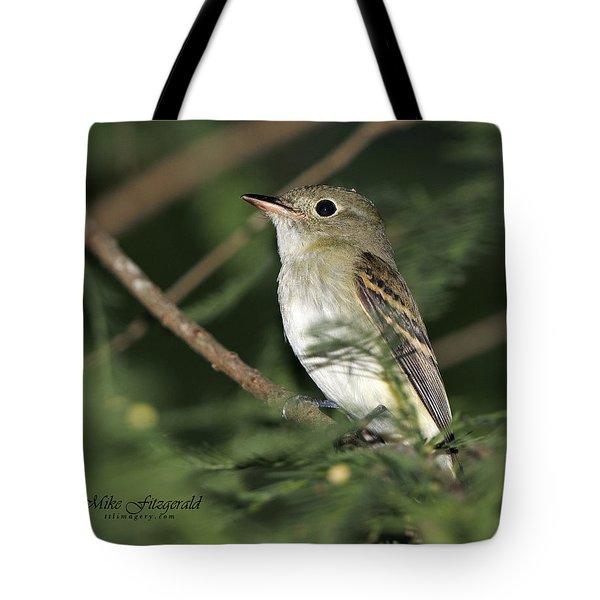 Acadian Flycatcher Tote Bag