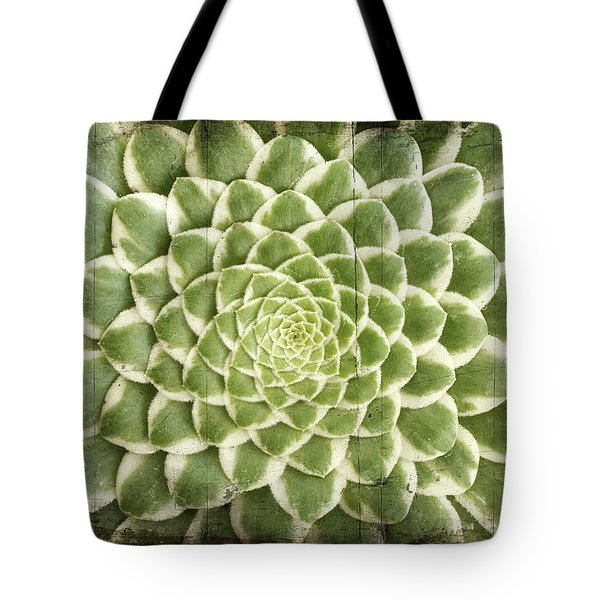 Tote Bag featuring the photograph Aeonium Succulent  by Catherine Lau
