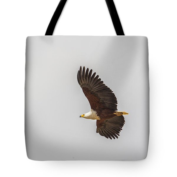 African Fish Eagle Tote Bag by Kathy Adams Clark
