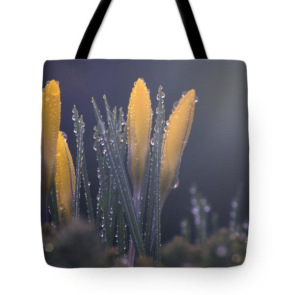 Promise Tote Bag by Rima Biswas